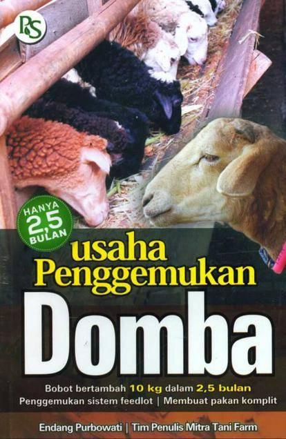 7. Usaha Penggemukan Domba (Revisi)