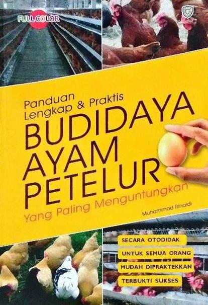 1. Budidaya Ayam Petelur