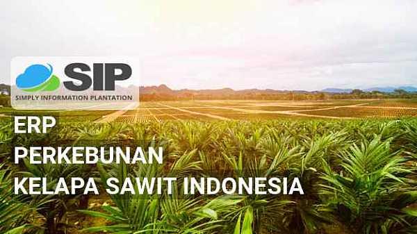 SIP Aplikasi ERP Perkebunan Kelapa Sawit Indonesia